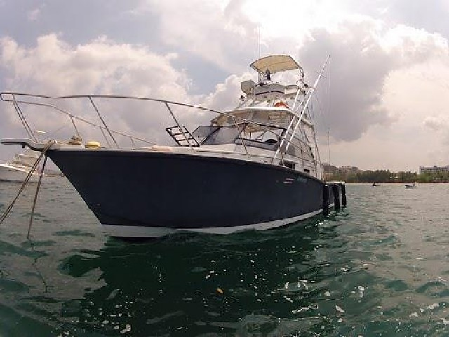 ... Yachts, Sportfishing, Sportfisherman, Sailboats | 31ft Rampage 31 ...